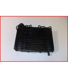 DAELIM ROADSPORT 125 2008 RADIATEUR-OCCASION